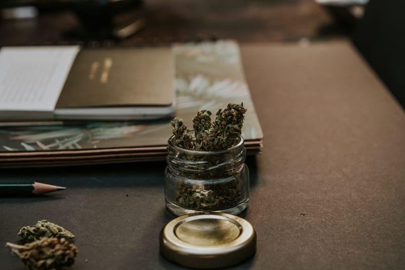 medical marijuana blog