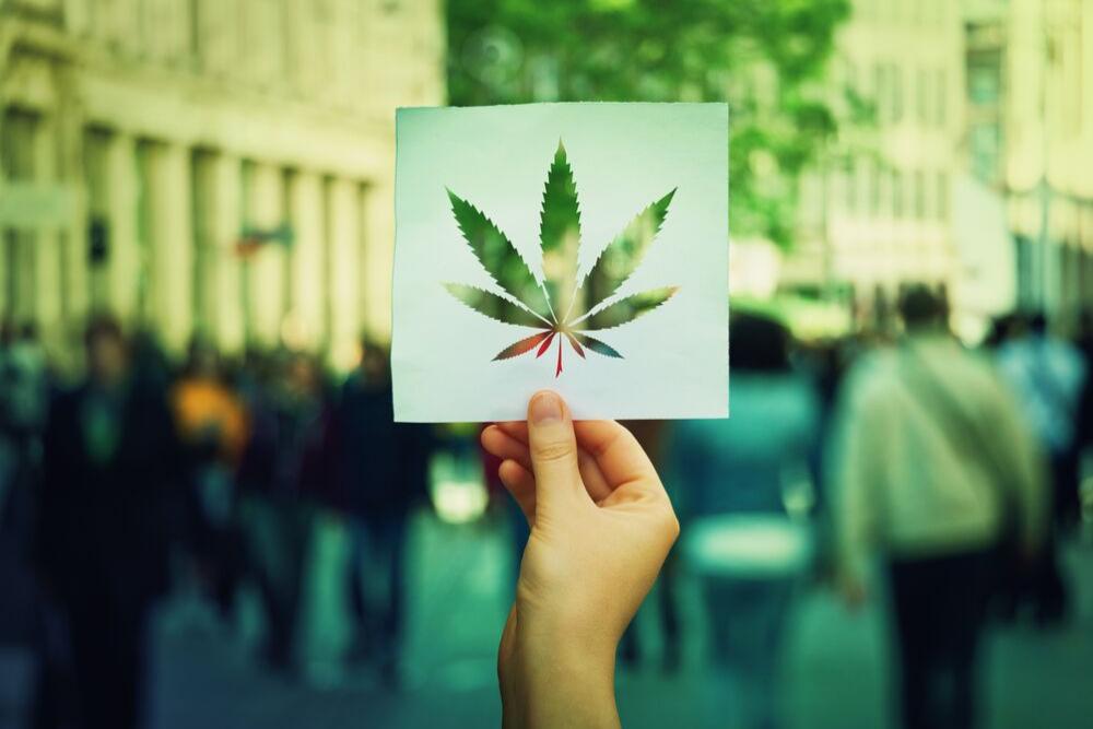 Blog Image Marijuana