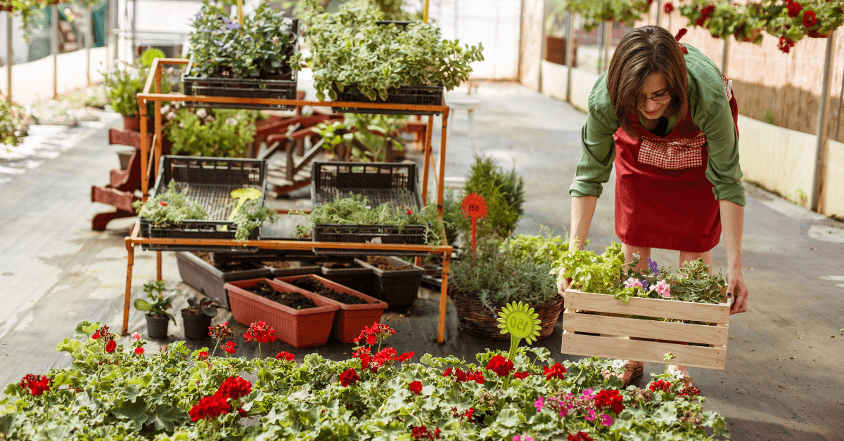 seasonal employee working in garden center